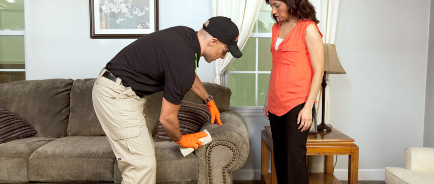 Bellefontaine, OH carpet upholstery cleaning